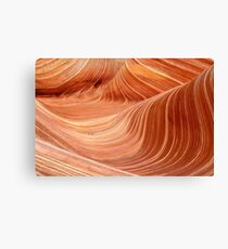 The Wave, Arizona Canvas Print