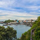 Tenby from a distance by SteveHphotos
