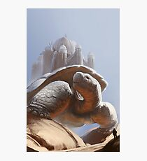 Turtle Temple Photographic Print