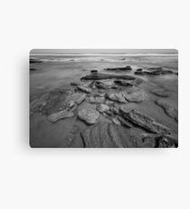 Coquina rock coastline Canvas Print