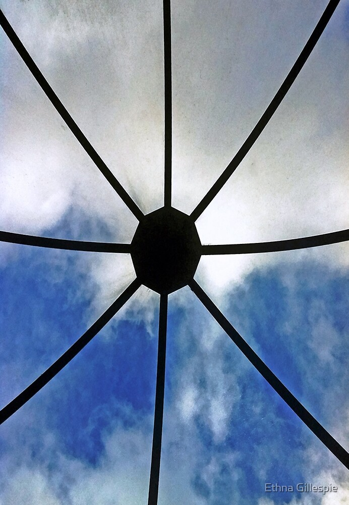 See the Sky  by Ethna Gillespie
