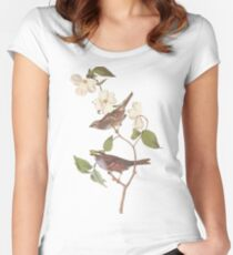 Audubon White Throated Sparrow Women's Fitted Scoop T-Shirt