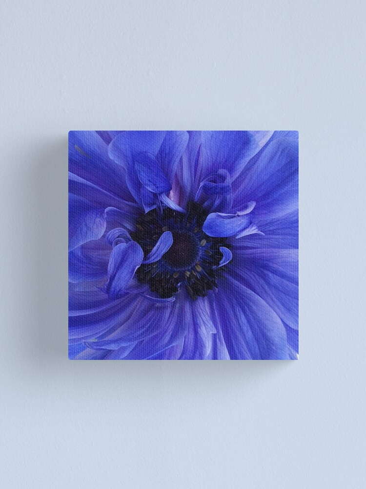 Alternate view of Blue Anemone Canvas Print