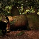 Old Steam Boiler by John  Kowalski