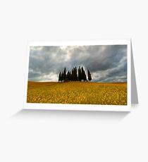 Cypresses Greeting Card
