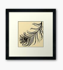 PEACOCK BIRD FEATHER  Framed Print