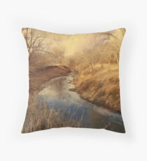 Following the Creek Throw Pillow