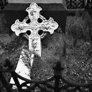 Grave Neglect by Karen E Camilleri