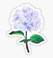 blue purple pink hydrangea Sticker