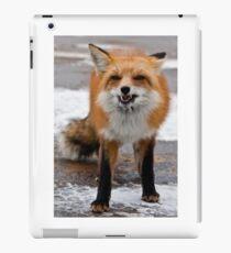 Goofy Fox iPad Case/Skin