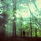 Into the wild by subhraj1t