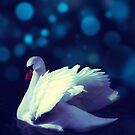Swan by Subhrajit Datta