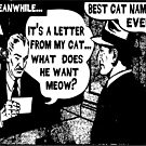 Funny Comic- My Cat. What Does He Want Meow? by tommytidalwave