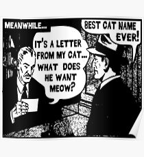 Funny Comic- My Cat. What Does He Want Meow? Poster