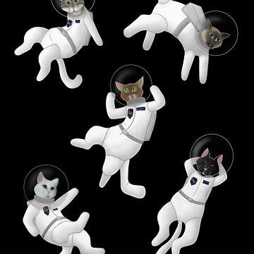 Catstronauts by GrinningDoom