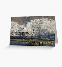 STARLIT BY NATURE Greeting Card