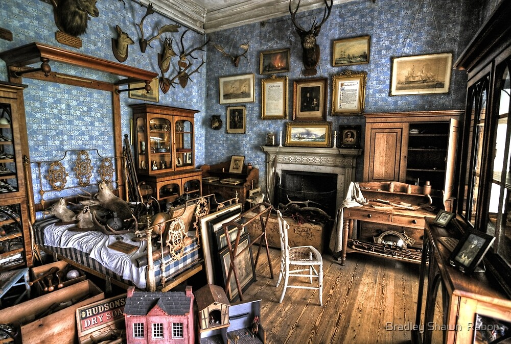 """""""Collection Room"""" by Bradley Shawn  Rabon"""