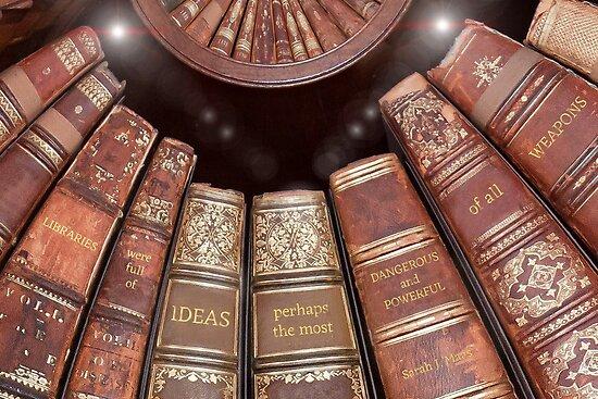 Bibliotheken waren voller Ideen von IronicSparrow