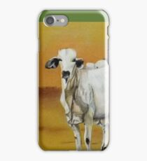 In the dry paddock iPhone Case/Skin