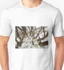 Snowgum near Mount Cope T-Shirt