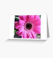 blushing debutante Greeting Card