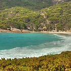Two People's Bay, Albany, Western Australia #3 by Elaine Teague
