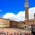 Piazza of Siena by Barbara  Brown
