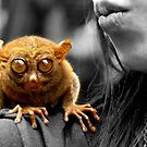 tarsier, selected by lensbaby