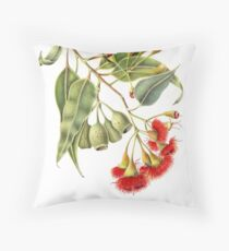 Corymbia ficifolia - Red Flowering Gum Throw Pillow