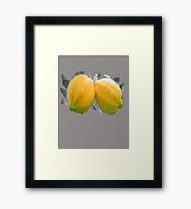 A Beautiful PAIR of LEMONS - tee Framed Print
