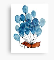 Dachshund dog and balloons Metal Print