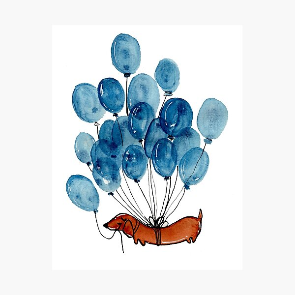 Dachshund dog and balloons Photographic Print