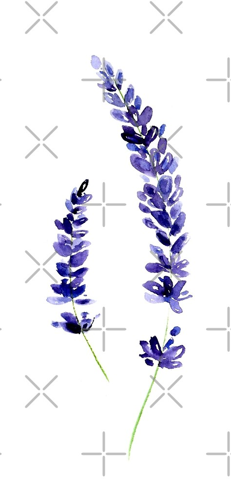 Lavender by KaylaPhan