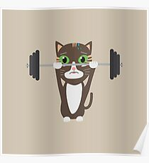 Fitness cat weight lifting   Poster