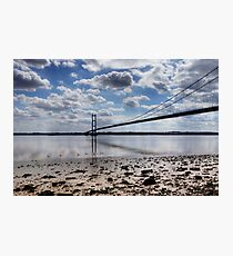 Swans at Humber Bridge Photographic Print