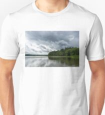Upcoming Storm  T-Shirt