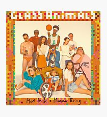 Glass Animals - How to be a Human Being Photographic Print