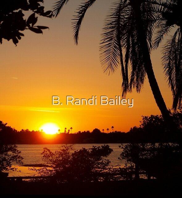 In its berth by ♥⊱ B. Randi Bailey