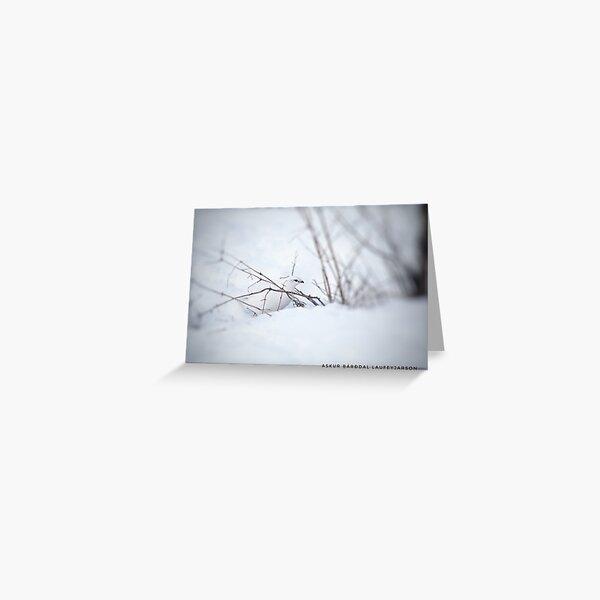 Rock Ptarmigan - Photograp Greeting Card