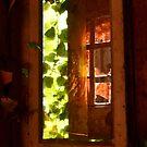 The Ivy-clad Window Reflection............ by Imi Koetz
