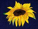 Rosie Sunshine on Denim by Anne Gitto