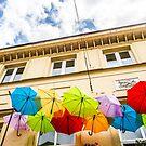 Umbrellas by Ken  Yan