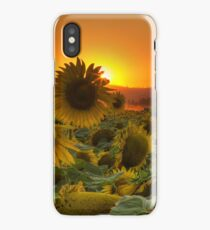 Sunflower Sun Rays iPhone Case