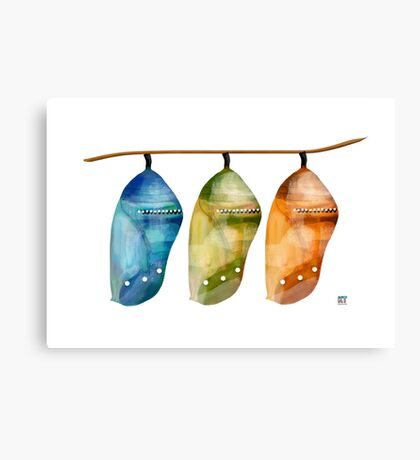 Chrysalis Rainbow Canvas Print