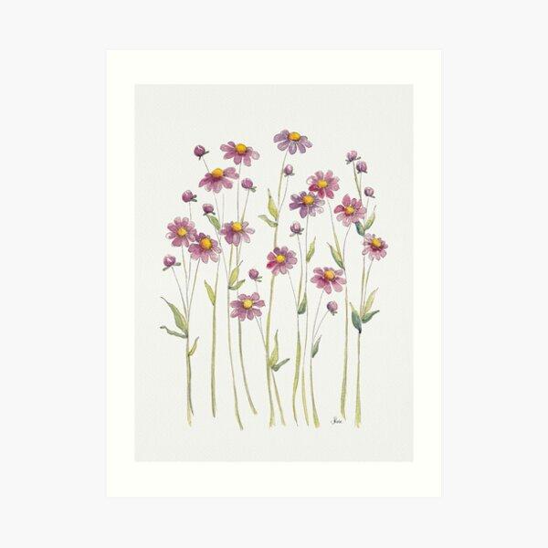 Pink Daisies Illustration Art Print