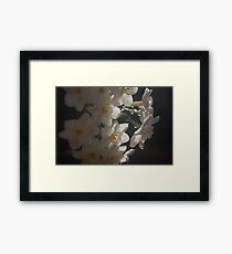 Daffodil 2 Framed Print