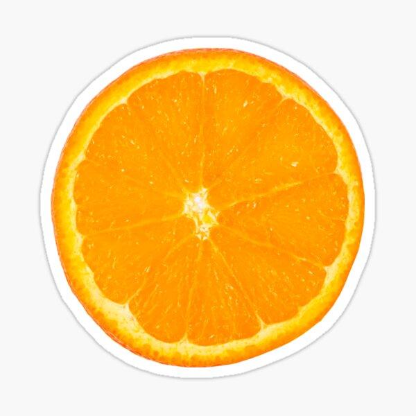 Orange Fruit- summer Sticker