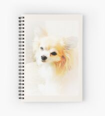 Long Haired Chihuahua Spiral Notebook