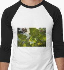 Elephant Ear HDR T-Shirt