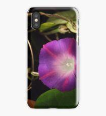 Mourning Glory iPhone Case/Skin
